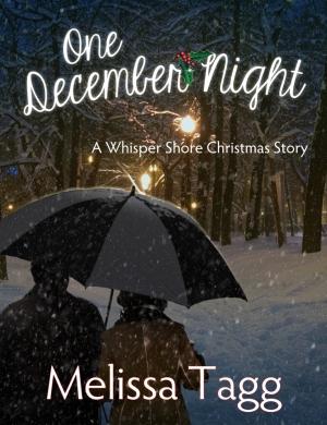 One-December-Night