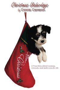 Christmas Underdogs