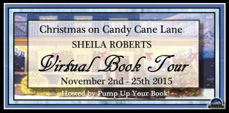 Christmas on Candy Cane Lane Tour Banner